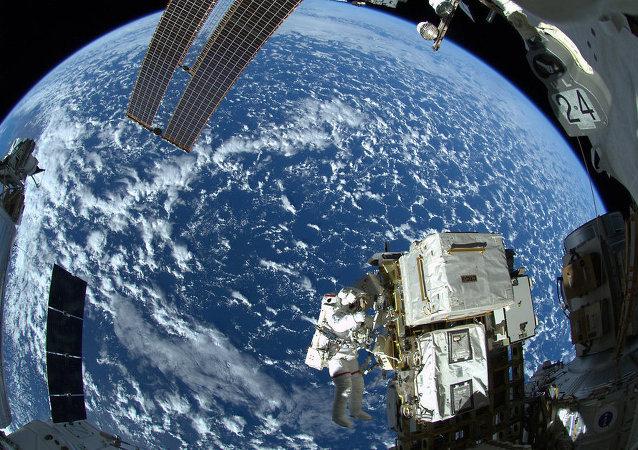 NASA:国际空间站考察组首次在太空收获白菜