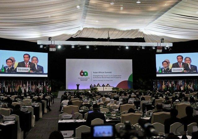亚非国家支持巴勒斯坦问题宣言