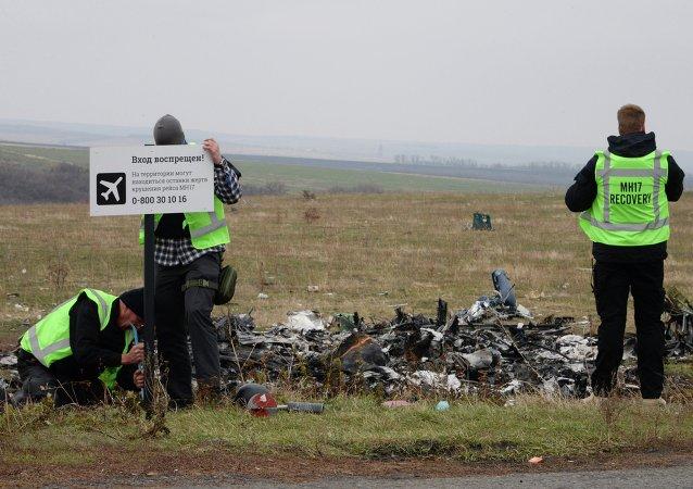 媒体:马航MH17失事前柏林已获知飞越乌克兰上空有风险