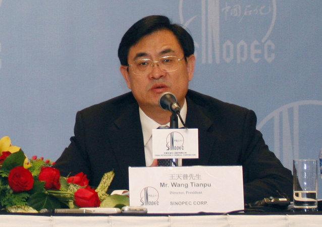 中国政府开始调查中石化总经理