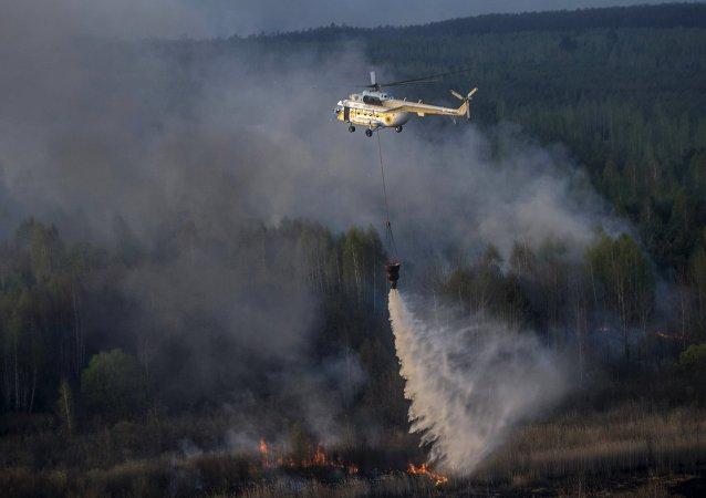 切尔诺贝利核电站隔离区内的火灾已被扑灭