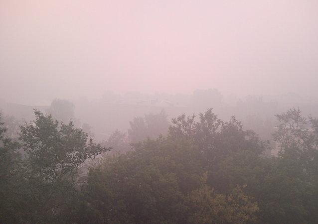 俄消费者权益保护局:布拉戈维申斯克空气因火灾而烟尘超标