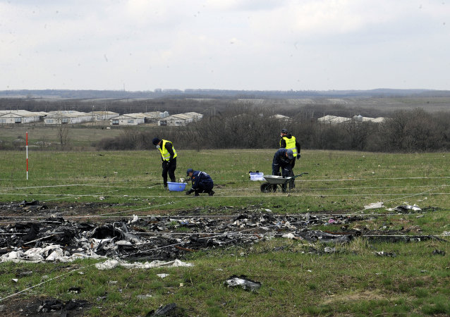 顿涅茨克共和国称发现马航MH17坠毁时乌防空导弹的位置