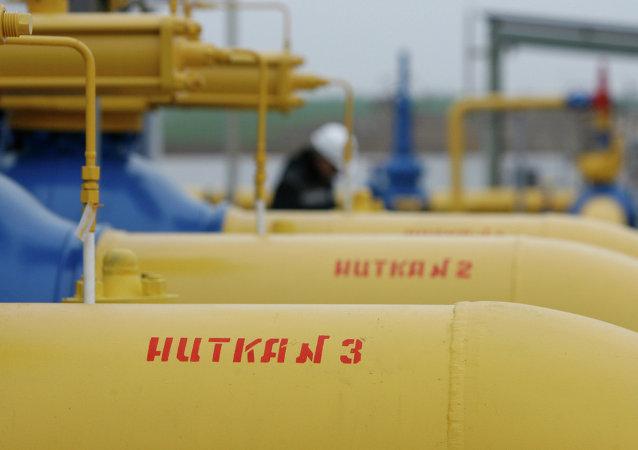 """普京已批准有关通过""""东线""""向中国输送天然气的协议"""