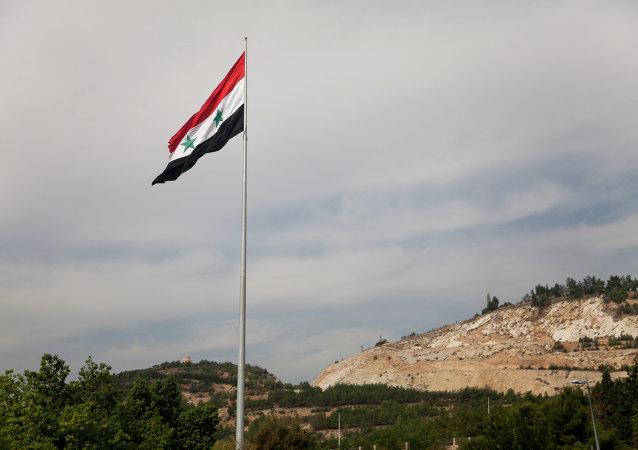 叙利亚反对派与会者呼吁成立小组制定国家新宪法