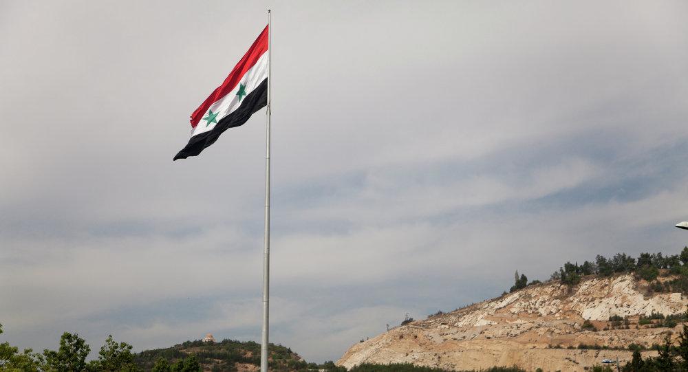 俄国防部:上千名武装分子已撤离大马士革省