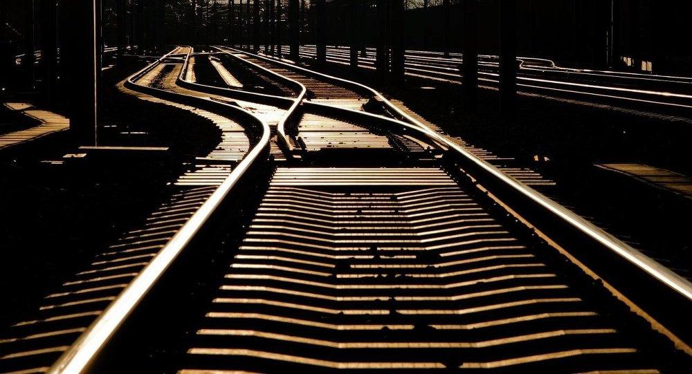 中国专家:中欧大通道作用初见成效