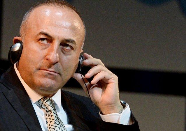 土耳其外长:北约明年峰会应宣布扩员