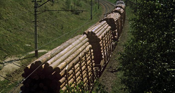 俄罗斯工贸部:第四届俄中博览会将推动两国木材加工领域合作