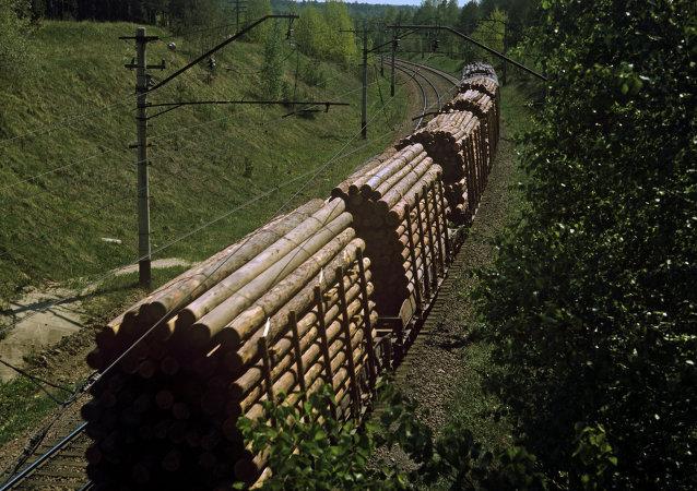 运送木材的火车