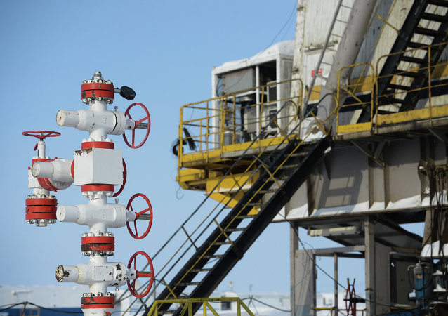 俄能源部长:俄罗斯希望6月底前再次举行俄欧乌三方会谈