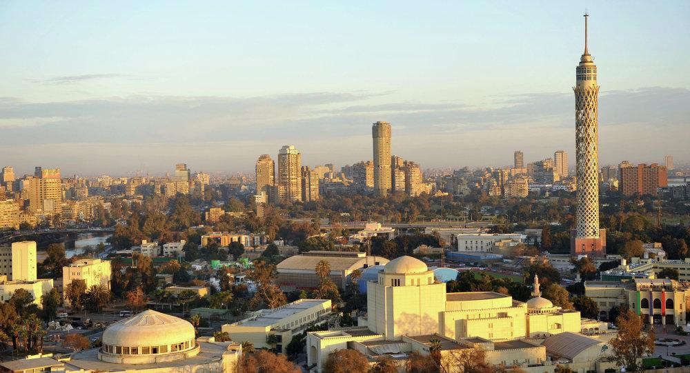 埃及政府宣誓就职