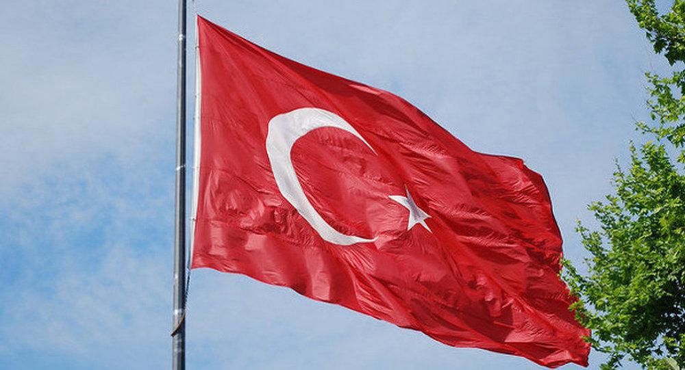 欧洲议员:土耳其与IS勾结 对其拨款是不负责行为