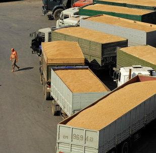 中国中粮集团将加强与俄外贝加尔地区的物流合作