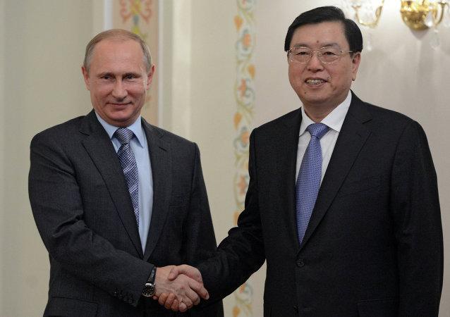 普京积极评价张德江访俄