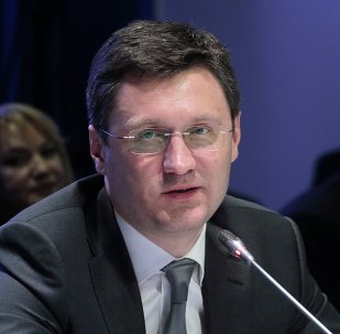 俄能源部長:俄能源公司在敘工作取決於員工安全
