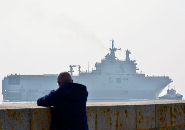 """综述:俄专家对埃及想购买""""西北风""""评论不一"""
