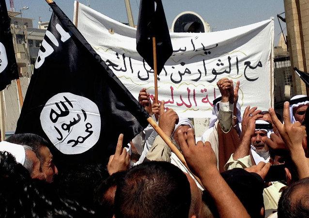 """俄联邦安全会议秘书认为不太可能阻止志愿者加入""""伊斯兰国"""""""