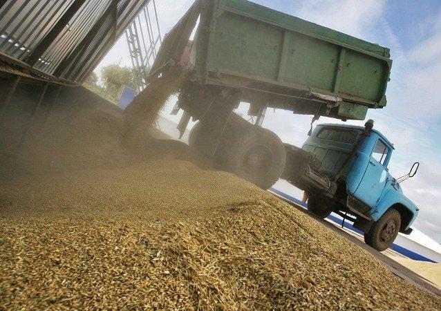 佳沃集团子公司将对华出口俄阿穆尔州农产品