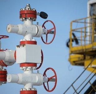 伊热夫斯克的公司与中国伙伴商定联合生产钻探设备