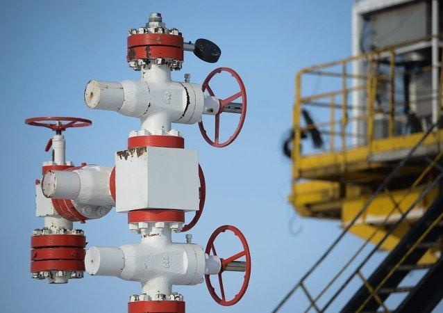 俄副总理:俄政府希望在两大油企的私有化中获利超过1万亿卢布