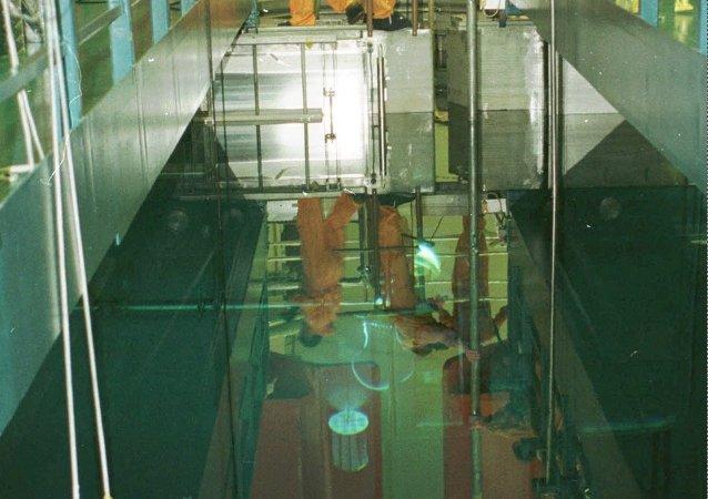 俄原子能集团正就印尼试验型核反应堆建设项目开展工作