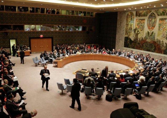 俄罗斯专家:联合国安理会改革时机已经成熟,但并不能一蹴而就