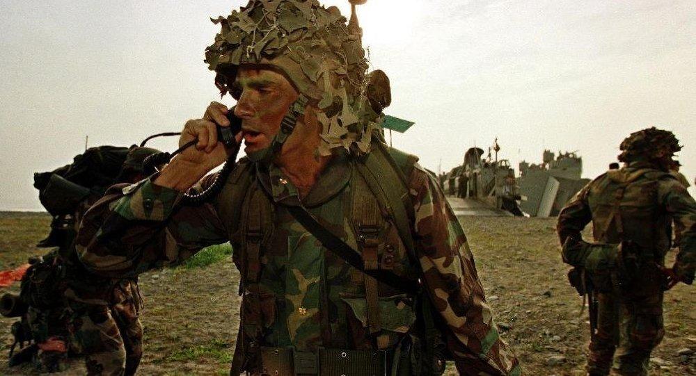 """见解:专家对美军地面进攻""""伊斯兰国""""的问题各持己见"""