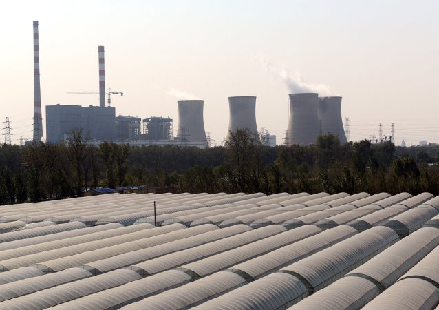 中国非常重视环境问题