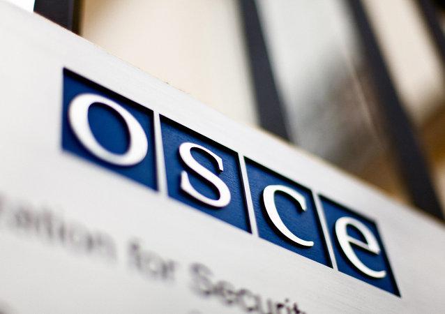 法国议员:欧安组织处理克里米亚问题未参照欧委会报告的方式