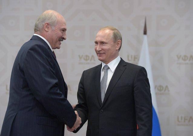 普京:白俄罗斯将成为上合组织观察员国