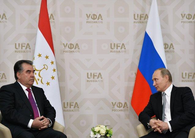 俄总统普京与塔吉克斯坦总统拉赫蒙
