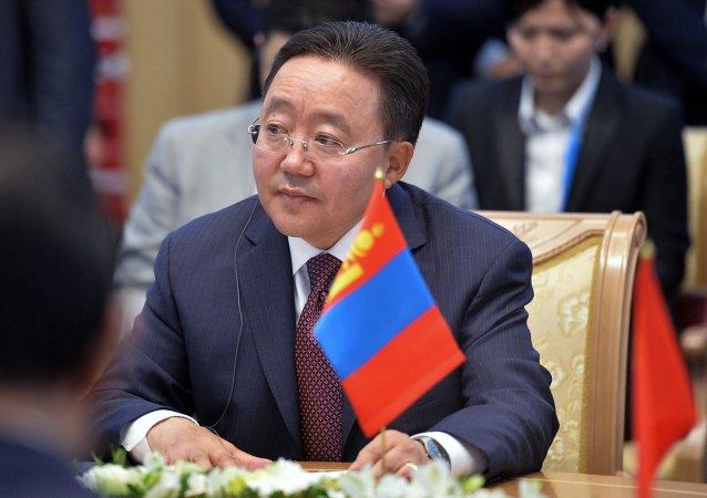 蒙古国总统建议俄中元首考虑在其境内修建天然气管道