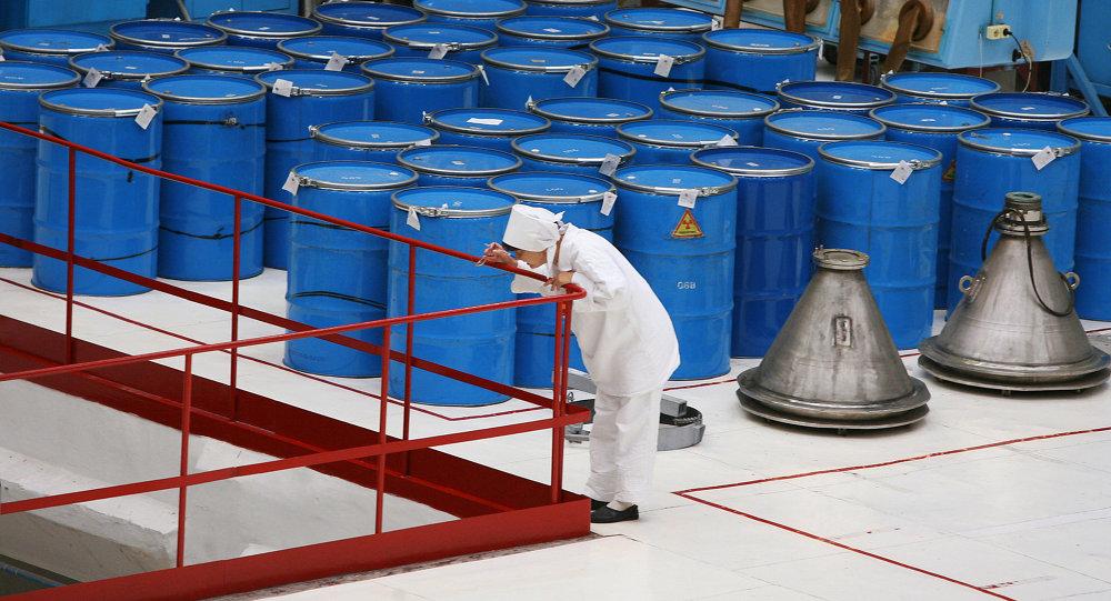 俄罗斯提出恢复俄美武器级钚处理协议的条件