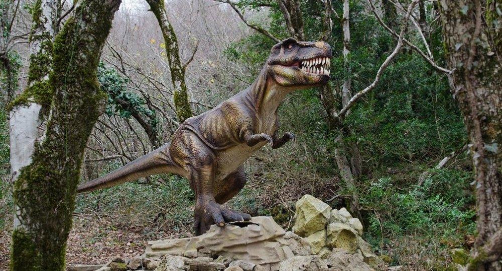 """科学家在中国找到了带有""""鸟""""羽的恐龙骸骨"""