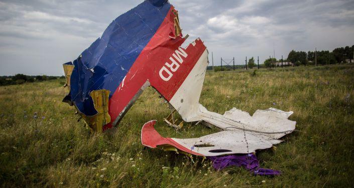马航MH17空难纪念活动