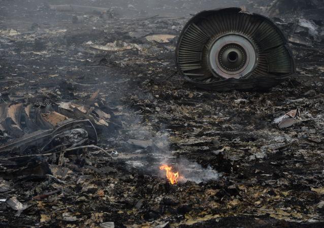 荷兰外交大臣不排除将基辅列为马航МН17客机坠毁事件责任方的可能