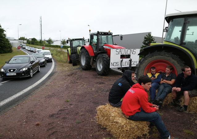 媒体:法国农民因受俄制裁罢工