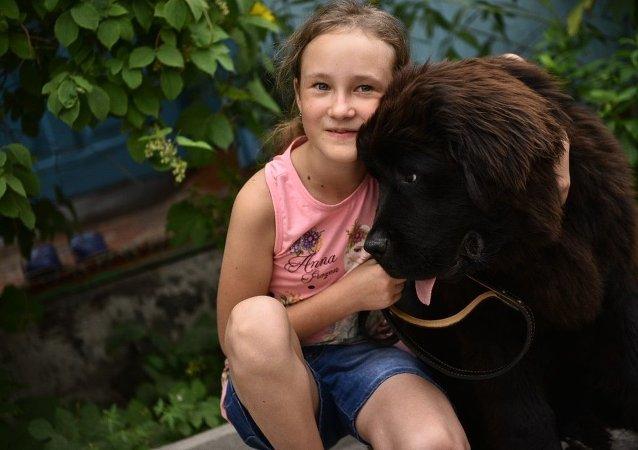 俄犬业联盟:居家隔离是一个养狗的好时机