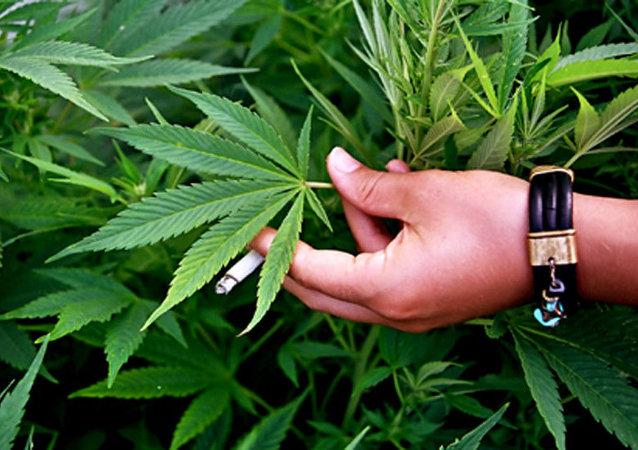 以色列政府批准使用大麻非刑罚化