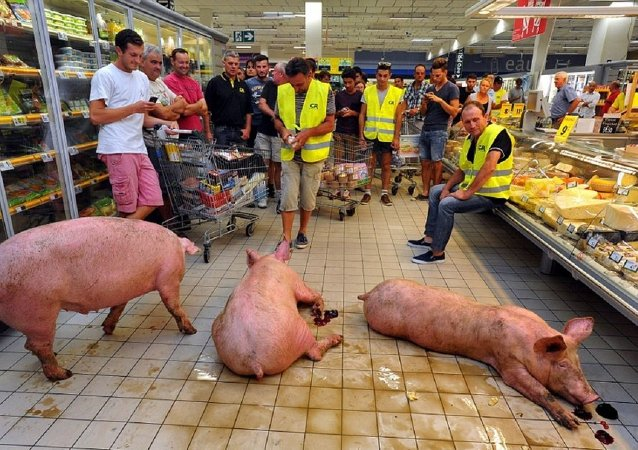 俄食品禁运导致法国猪肉每公斤损失20欧分