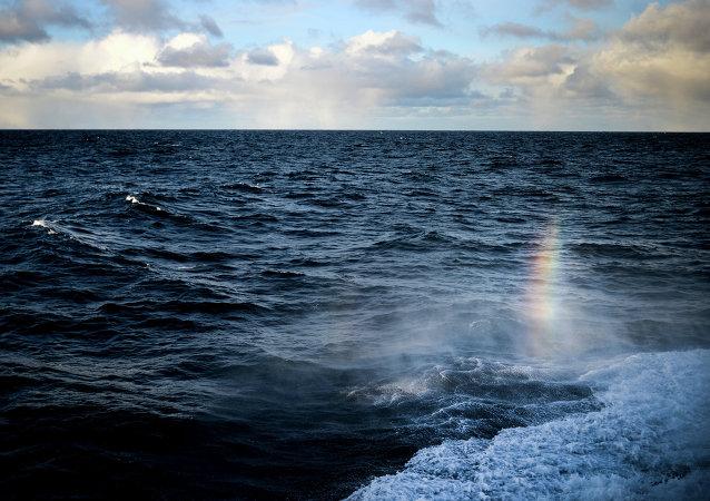 俄海军总司令:俄海军图形数据库规模已达世界第三