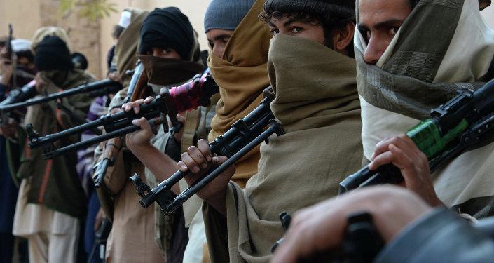 媒体:阿富汗西部至少30名塔利班成员策划恐袭反炸死自己