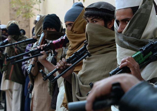 """在阿富汗的""""伊斯兰国""""头目之一在空袭中被击毙"""