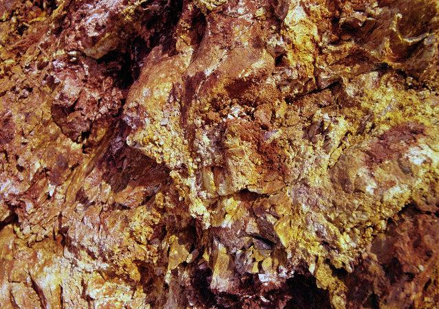 俄公司在苏丹找到最大金矿,投资合同已经签署