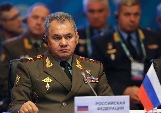 俄罗斯国防部长谢尔盖·邵伊古