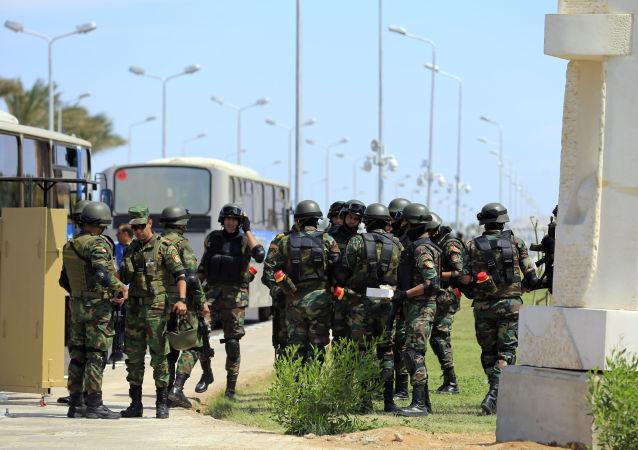 埃及军队在西奈半岛北部消灭约70名极端分子