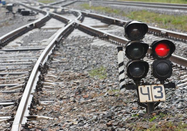 媒体:首列载有俄罗斯向中国出口食品的火车将于3月底发出