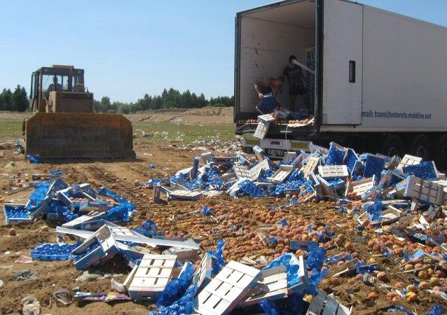 俄动植物检疫局8日销毁受制裁牛肉3吨和辣椒20吨