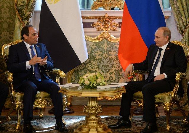埃及外长:埃及相信A321空难不会影响埃俄关系